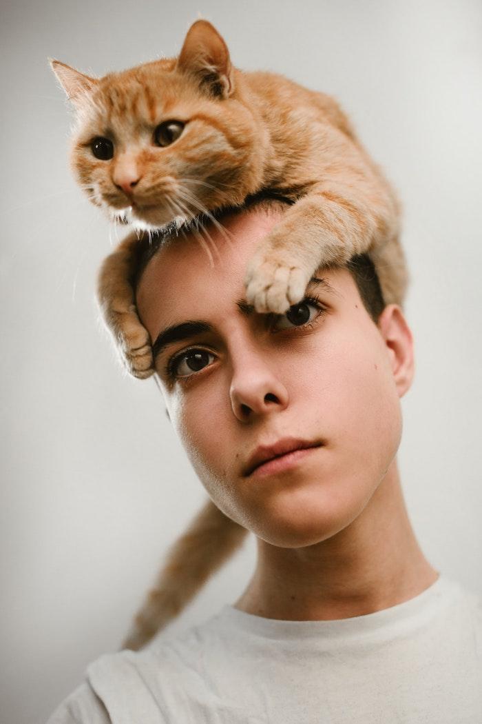 Cool photo fond ecran beau fond ecran ordinateur fond d écran humour homme avec chat sur la tete