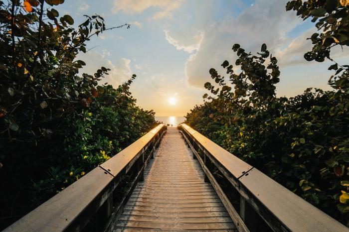 paysage mer, paysage paradisiaque, buissons des deux cotés d'un pont, ciel bleu avec des nuages blancs, horizon ensoleillé