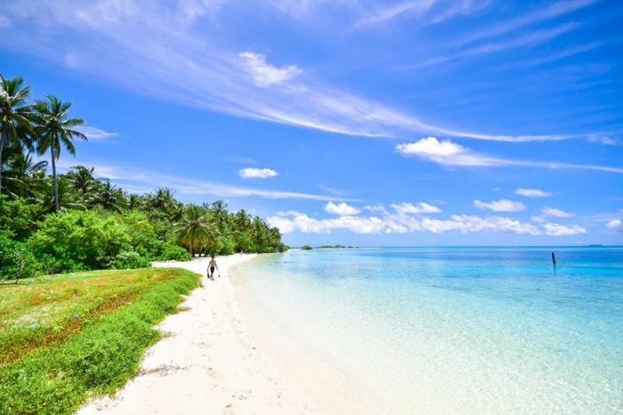 paysage paradisiaque, ciel bleu et nuages blancs, palmes et vert qui entourent le sable jaune, eaux bleues transparentes