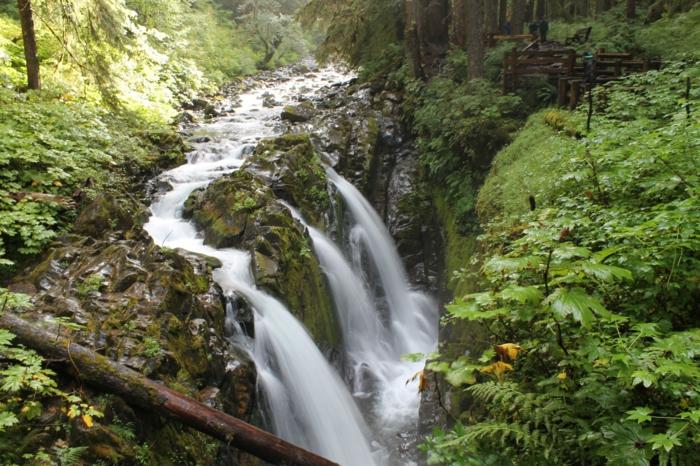 cascades d'eau dans une foret, arbres verts, eau qui coule parmi un beau vert, paysage paisible et zen, nature au printemps, fond ecran paysage, paysage paradisiaque