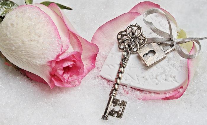 Super idée fond d'écran fleurs de printemps rose rose gratuit photo belle rose sur la neige