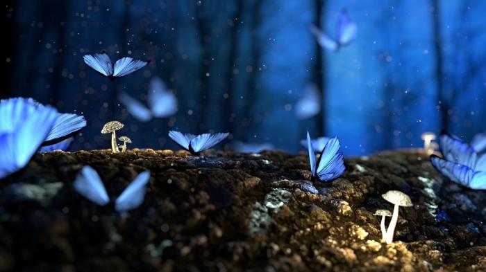 les plus beau fond d écran, image digitale avec papillons volants de couleur bleue qui illuminent la forêt pendant la nuit