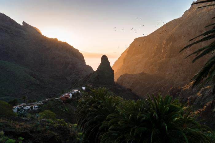 exemple de fond d écran jolie au lever du soleil dans les montagnes, paysage avec montagnes et plantes exotiques