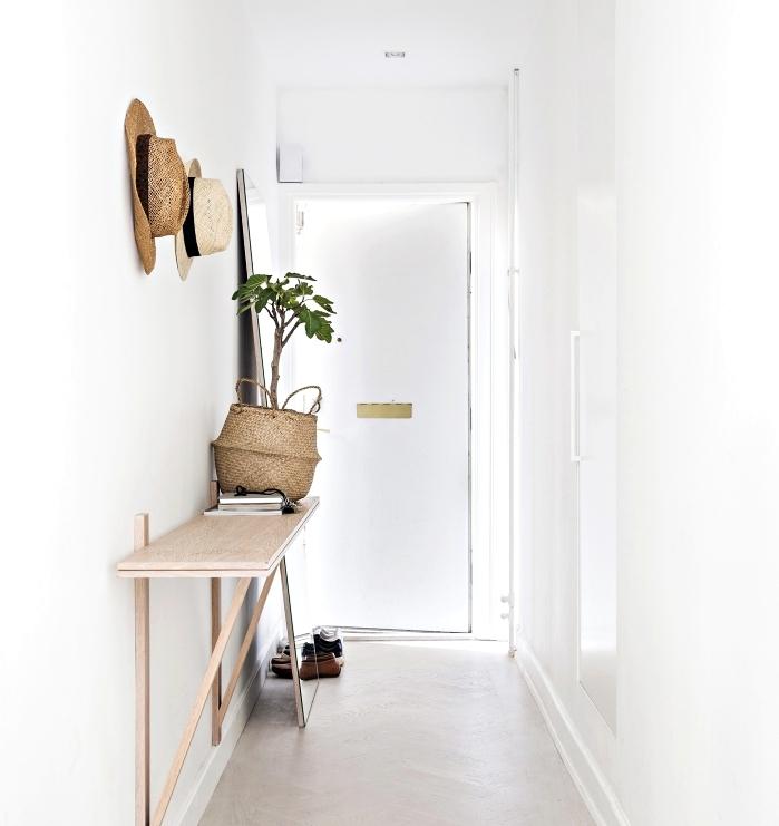 déco minimaliste de style boho chic et scandinave avec meubles de bois clair et peinture murale blanche