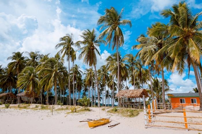 fond d écran wallpaper exotique, photo d'ile tropicale au ciel bleu et palmiers sur la plage au sable doré avec petite maison de bois