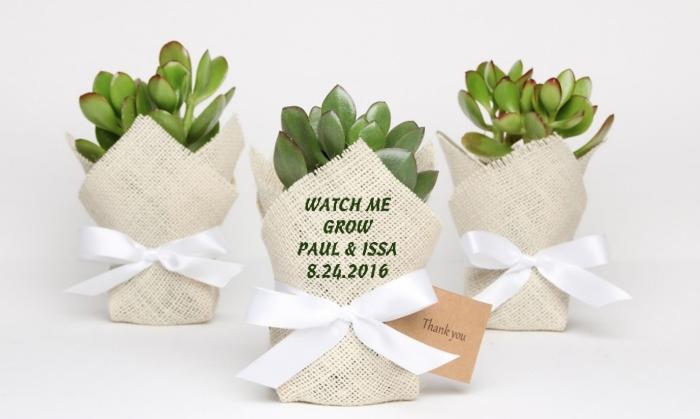 fleur et plante verte avec emballage beige et ruban blanc dans petit pot pour un cadeau invité vert avec note de remerciement