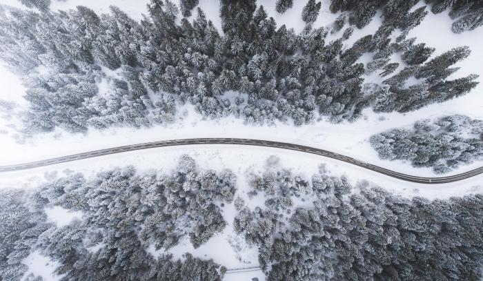 les plus beau fond d écran de nature, vue d'oeil d'oiseau au-dessus d'une forêt d'arbres conifères enneigée