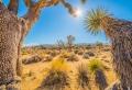 119 photos fantastiques pour trouver le meilleur fond d'écran nature