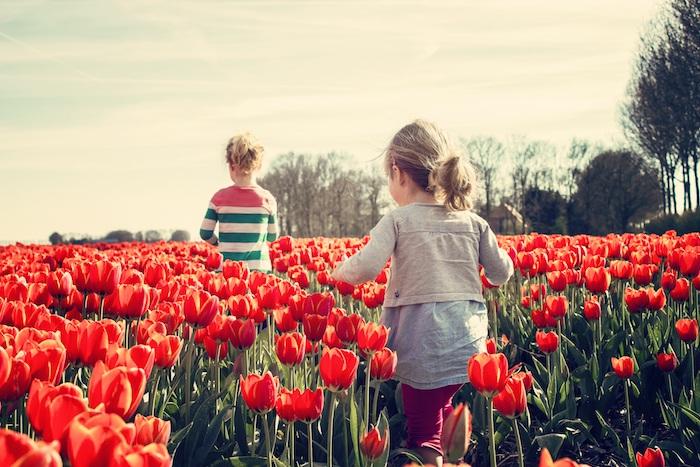 Belle idée quel fond d'écran choisir pour son ordinateur filles dans champ de tulips