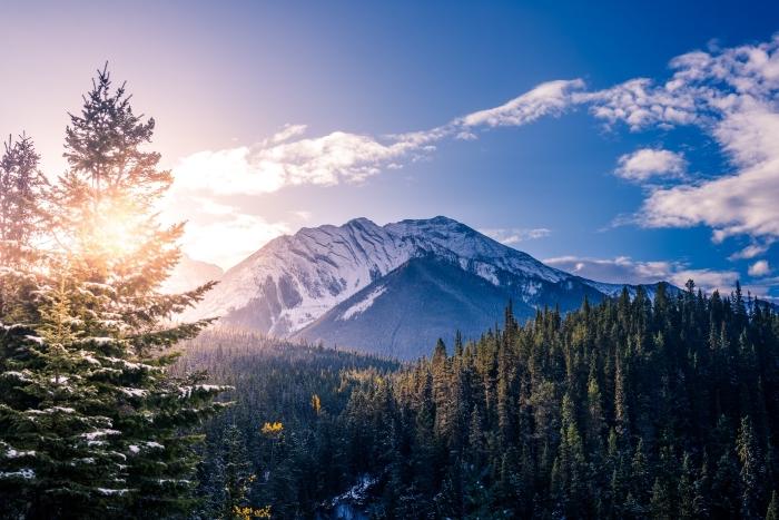photo des montagnes enneigées, fond d écran gratuit avec forêt d'arbres conifères et colline enneigée au lever du soleil