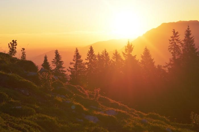 image fond d écran au lever de soleil, photo naturelle avec montagnes et forêt d'arbres conifères illuminés par les rayons du soleil