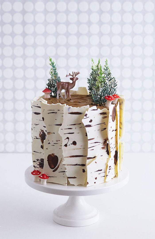 Idée gateau chocolat gâteau d'anniversaire au chocolat idée gâteau anniversaire enfant 5 ans nature thème