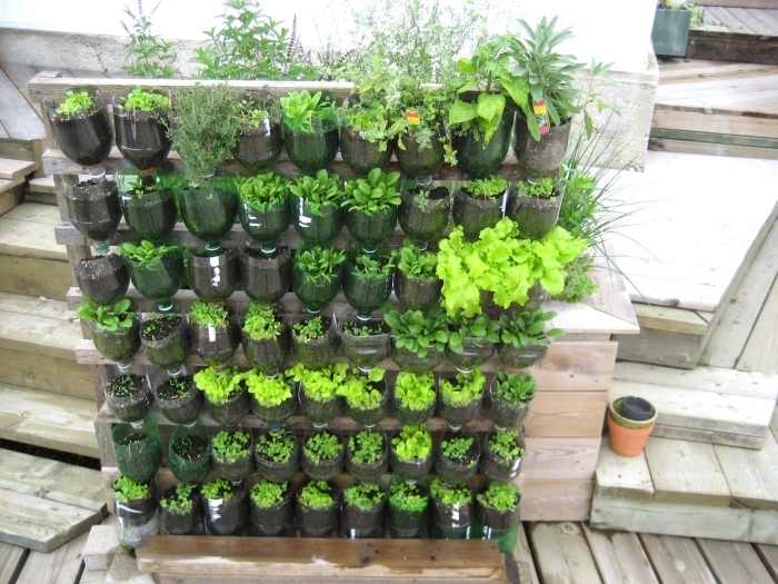 exemple de potager en hauteur avec semis de légumes variétés salades, comment faire un petit jardin en ville
