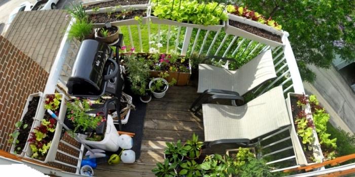 superbe décoration de balcon ou terrasse avec un coin barbecue transats et plusieurs plantes comestibles en pots