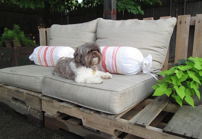 canapé en palette dans un jardin avec des coussins d assise gris et coussins bonbon colorés, chien mignon, plantes vertes