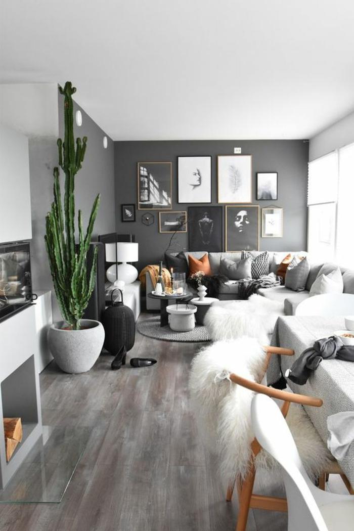 mur peint en gris pastel, sol en dalles imitation du parquet aux effets de vieilli grisâtres, décoration murale chambre, décoration murale salon, des photos et des dessins couvrent quasi entièrement le mur gris, grand cactus vert dans un coin