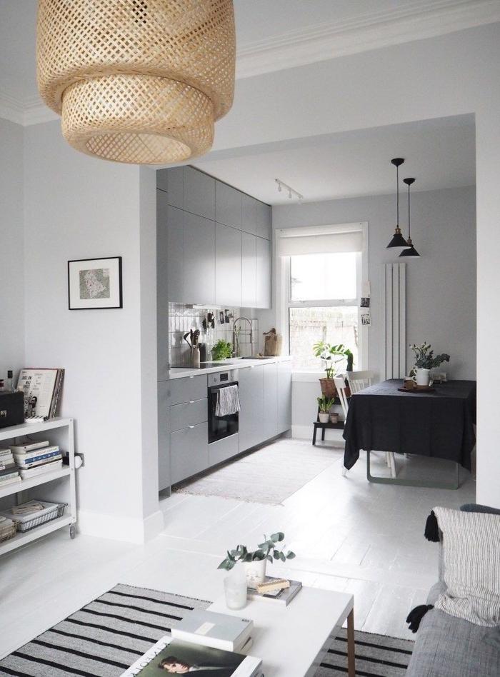 petite cuisine gris clair mat de style scandinave aménagée en longueur, qui semble se fondre dans le salon grâce à sa simplicité extérieure