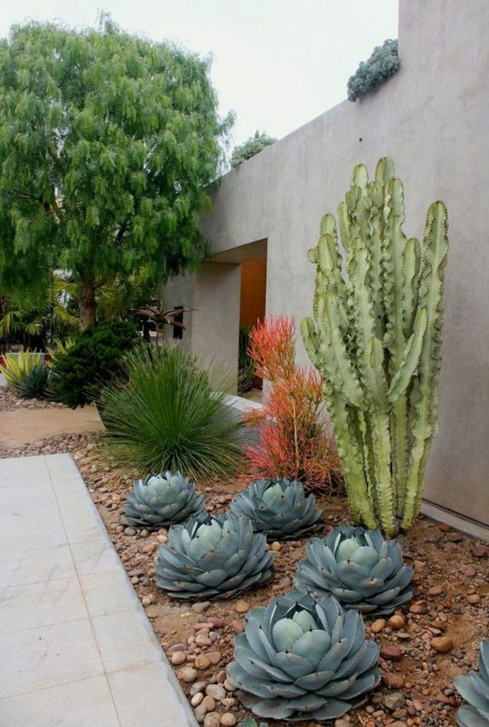jardin deco, amenagement exterieur, jardin paysager, cactus et plantes exotiques, pavillon en béton gris clair, décorer son jardin