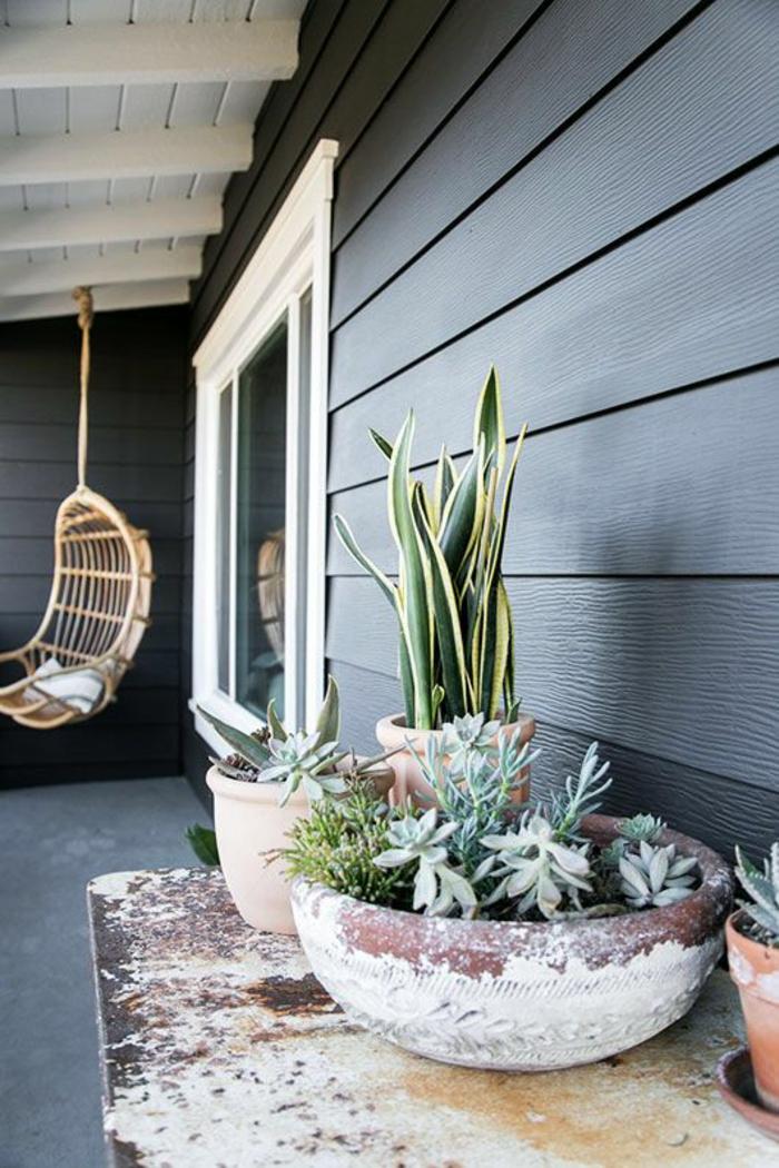 fauteuil coque en canne suspendu au plafond en poutres blanches, idée déco terrasse, table usée vintage avec des pots de plantes vertes exotiques, divers types de cactus