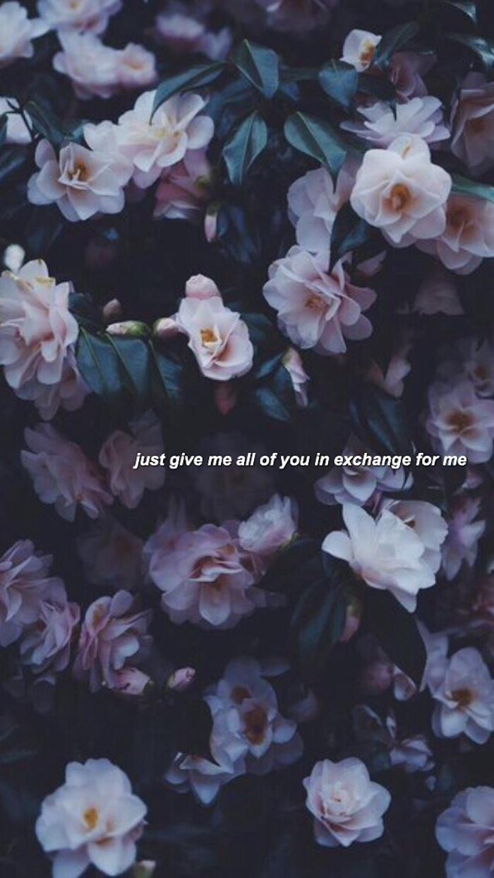 Fond d'écran tumblr fond d'écran verrouillage fond d'écran nature idée photo de roses avec citation