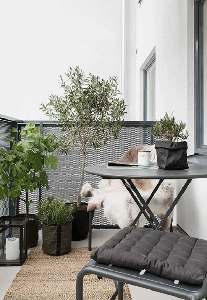 idee amenagement terrasse, decoration terrasse exterieur, meubles de jardin en métal noir, table ronde avec plan en verre trempé opaque, tapis rectangulaire en beige, deux petits arbres en pots