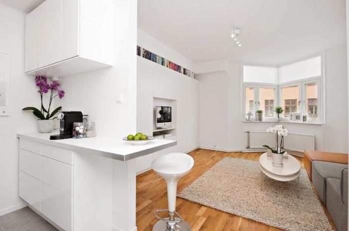 studio aménagé avec petite cuisine blanche et grand salon avec meubles multifonctions escamotable sur plancher de bois