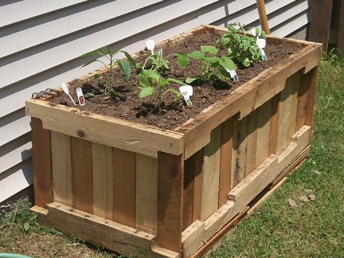 pot de fleurs en palettes, meubles de jardin en palettes, plantes vertes, accessoires de jardin en palettes, maison aux murs en couleur ivoire