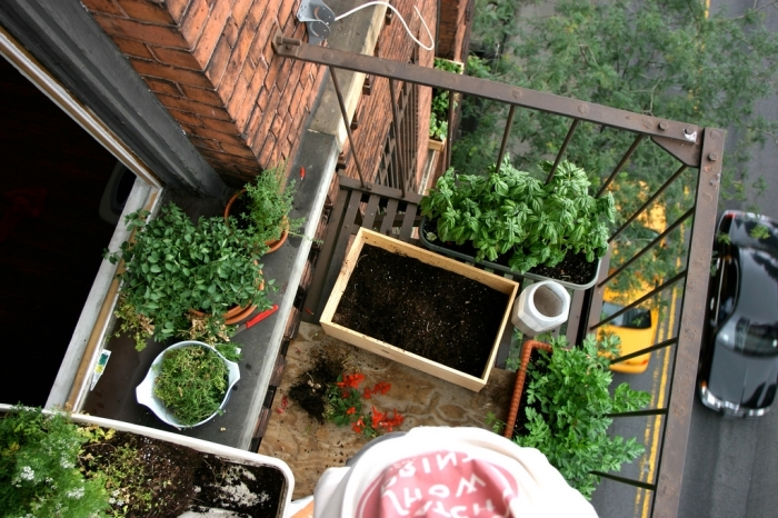 idée transformation balcon en mini jardin urbain avec légumes et aromatiques cultivés dans pots et jardinières