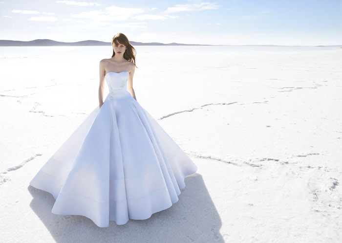 robe de mariée style princesse simple avec une large jupe plissée et un bustier blanc, quelques fleurs blanches brodées