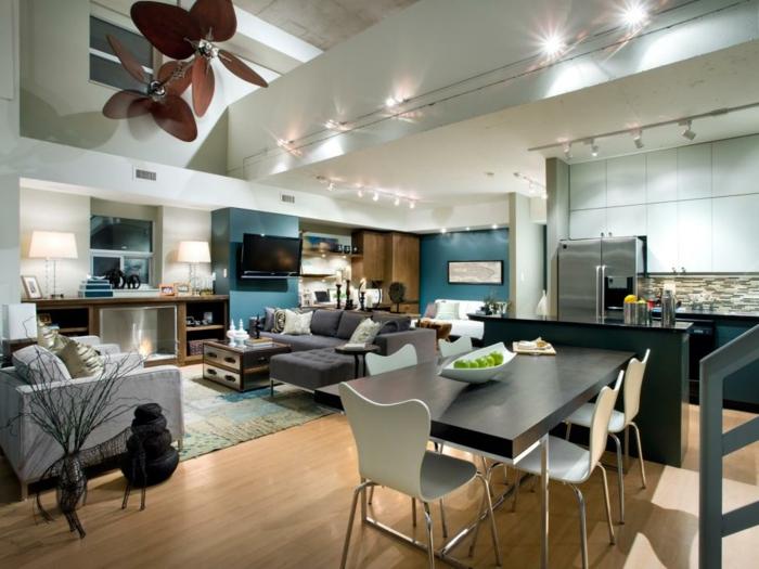 petit appartement équipé, cuisine, salle à manger et séjour, installation lumineuse au plafond, intérieur bien organisé