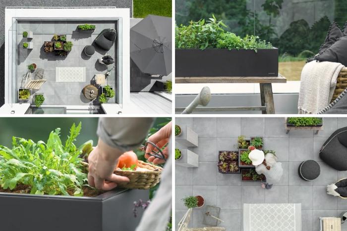 organisation et rangement de terrasse avec mobilier de jardin et plantes comestibles, cultivation de carottes sur le balcon