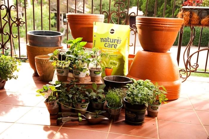 créer un potager urbain sur son balcon ou terrasse avec pots terre cuite remplis de terreau légumes et aromatiques