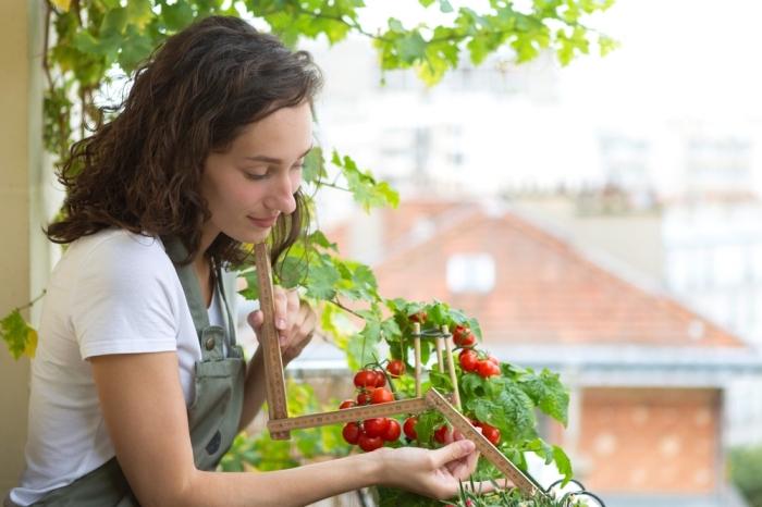 comment faire un potager sur le balcon avec tomates cerises ou plantes aromatiques, inspiration de jardinage urbain dans appartement