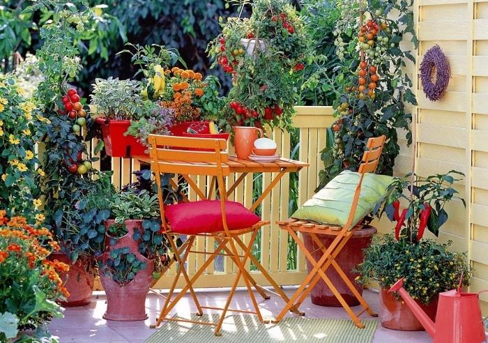 jolie décoration d'espace extérieur appartement ou maison avec création de mini potager balcon avec légumes en pots