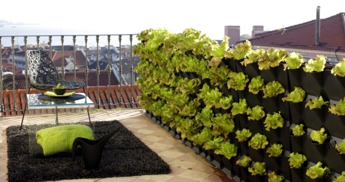 large terrasse avec mobilier de jardin composé d'une chaise noire et d'une table en verre avec mur en salades comestibles