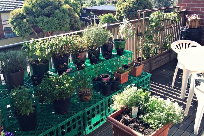 aménagement de terrasse en potager vertical ou horizontal avec légumes et plantes aromatiques en pots