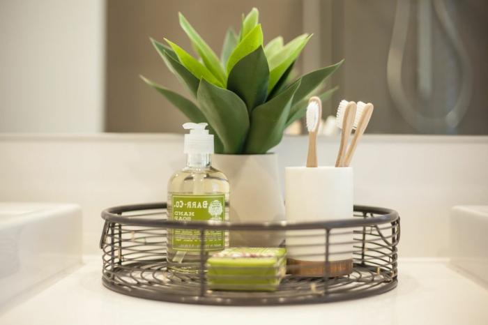 plante pour salle de bain, plante interieur ombre, aloe vera de petite taille dans un petit pot blanc en formes géométriques, plante qui absorbe l'humidité, composition avec plante entre les deux lavabos de la salle de bain