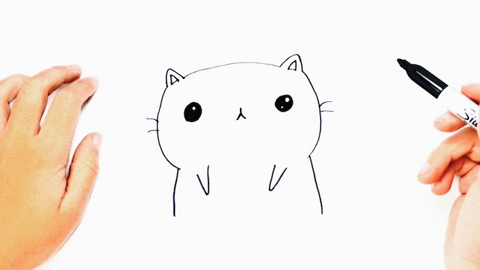 Dessin jolie modèle de dessin facile petit dessin mignon comment dessiner illustrations modèle chat dessin