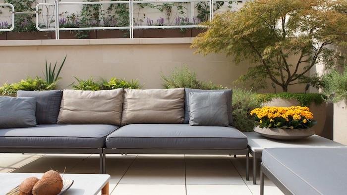 revetement sol en carrelage beige, coussins gris et beige, table basse, arbustes et arbre miniature
