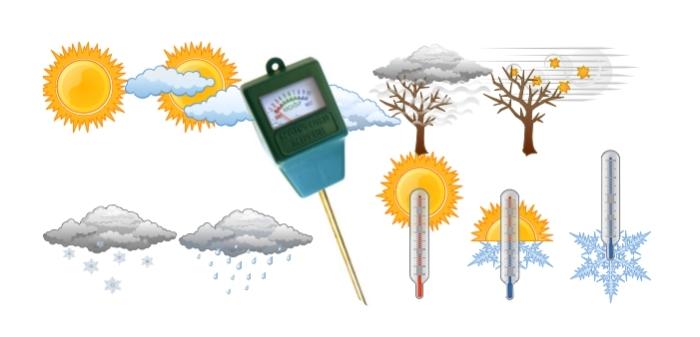 illustration avec les conditions et facteurs météo pour le compost, emplacement d'ombrage et manque de soleil