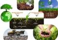 Tout savoir pour fabriquer un composteur dans son jardin ou sur le balcon