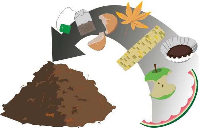 illustration pour comprendre comment fonctionne le compost, produits et matières à utiliser pour créer un engrais naturel