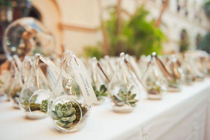petit terrarium en verre avec succulent et mousse florale dans un récipient en verre avec carton papier krfat