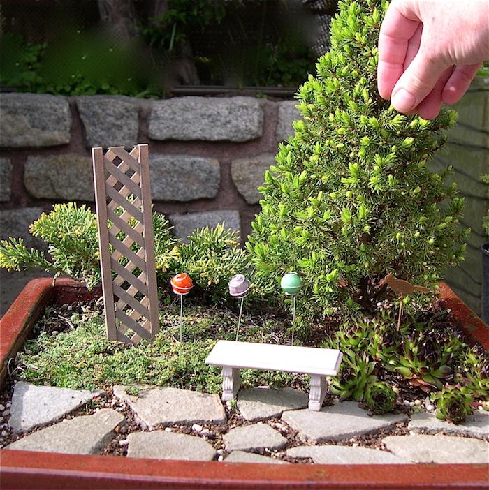 mini jardin style japonais simple diy avec arbre miniature petit banc et chemin de pierre Tobi ish