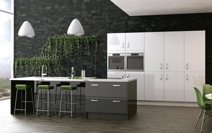 cuisine moderne en blanc et gris avec décoration végétale sur mur gris en pierre, modèle de cuisine avec îlot central