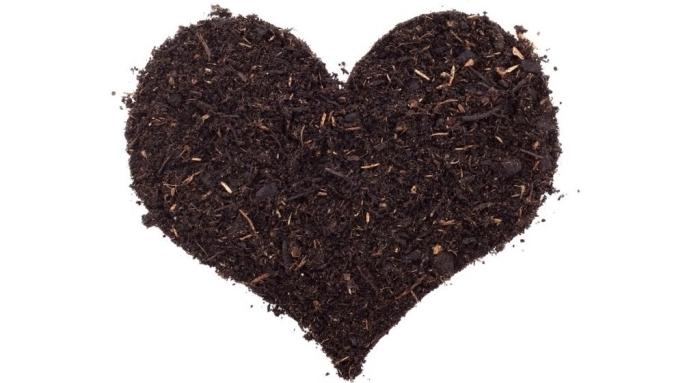 photo de terre et vers en forme de coeur comme une idée de geste-éco, compostage dans maison ou sur le balcon