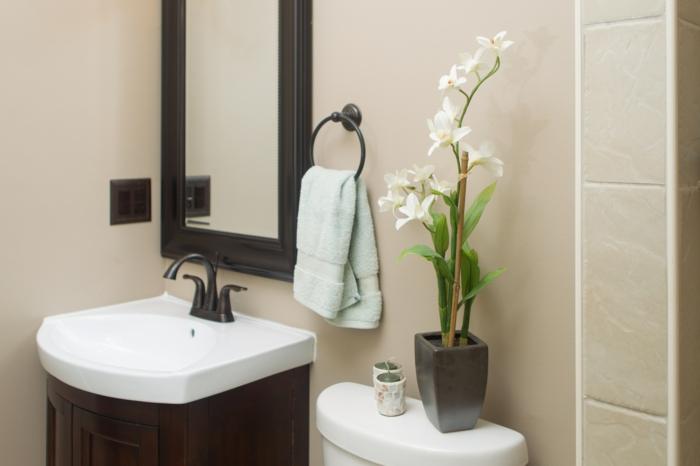 plante interieur ombre, plante pour salle de bain, grand miroir rectangulaire au cadre noir, salle de bain verte, murs peints en beige, carrelage beige