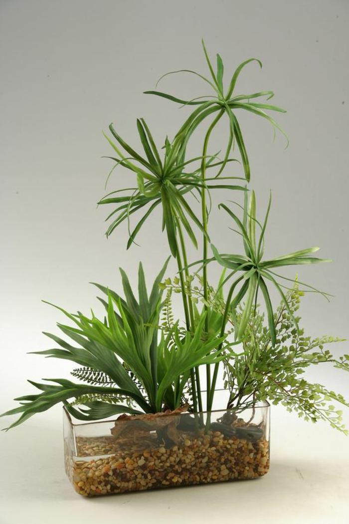 plantes vertes d'intérieur, papyrus de taille moyenne, récipient en plexiglas transparent, salle de bain verte, plante pour salle de bain