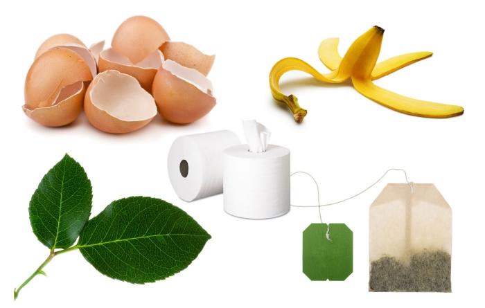 quels produits utiliser pour activité le processus de compostage, coquilles d'oeufs et pelures de fruits pour compostage