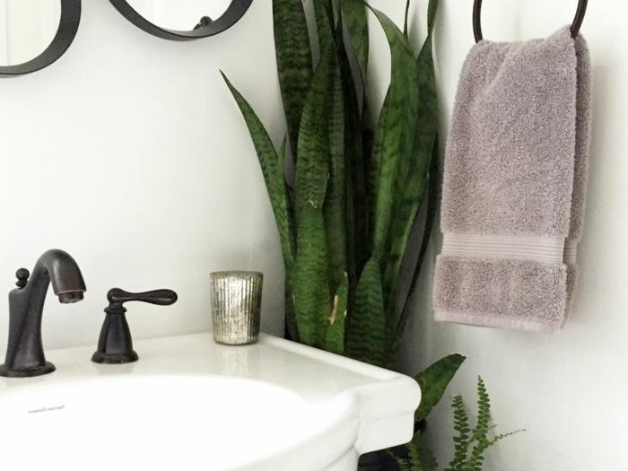 détails d'un aménagement de salle de bains, coin avec une plante pour salle de bain, porte-serviette en métal noir, serviette en couleur taupe, lavabo blanc vintage avec éviers noirs en style vintage
